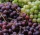 Žaliosios ir tamsiosios vynuogės: kurios vertingesnės?